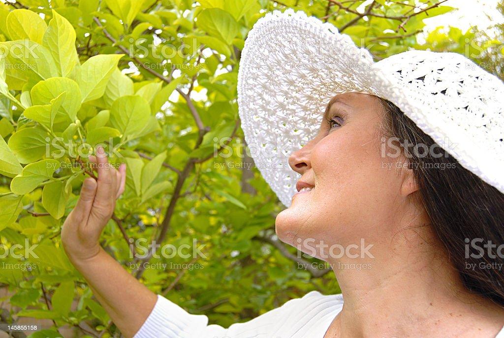 In a spring garden royalty-free stock photo