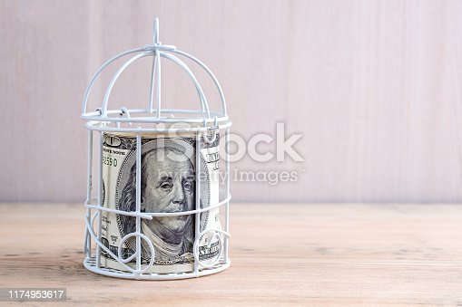 istock in a white metal cage on a wooden table closed 1174953617