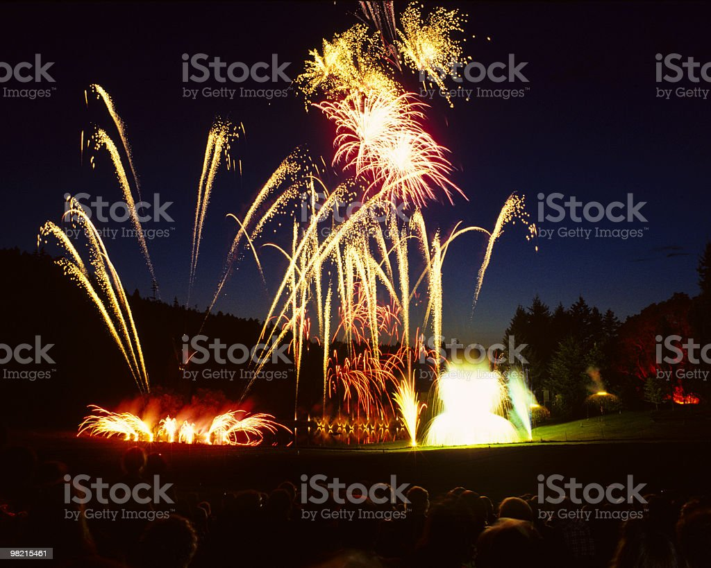 Fireworks at Night royalty-free stock photo