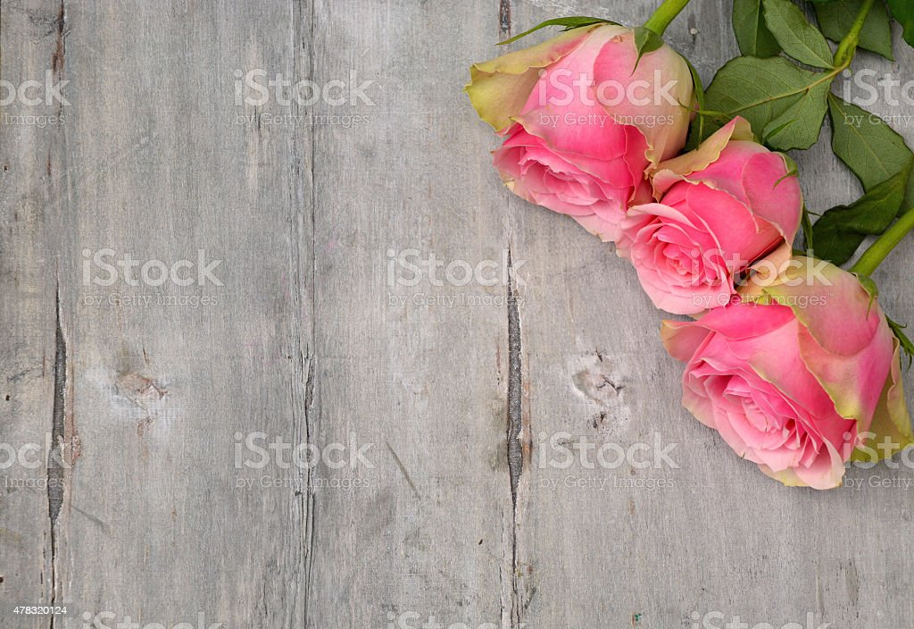 in corner pink roses on old wooden empty space background stock photo