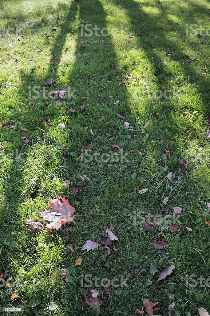 In early autumn royalty-free stock photo