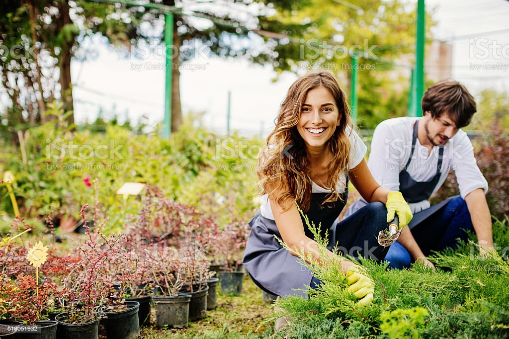 In gardening business stock photo