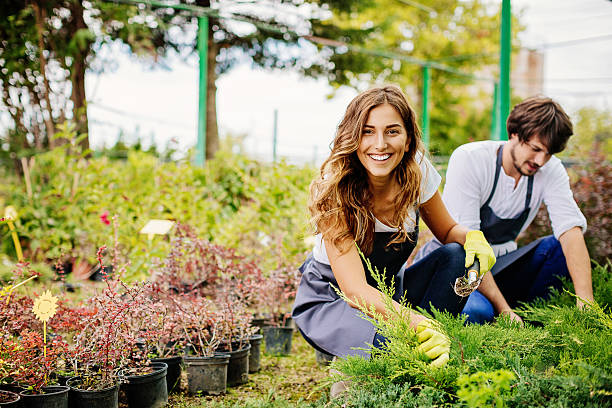 In gardening business stock photo