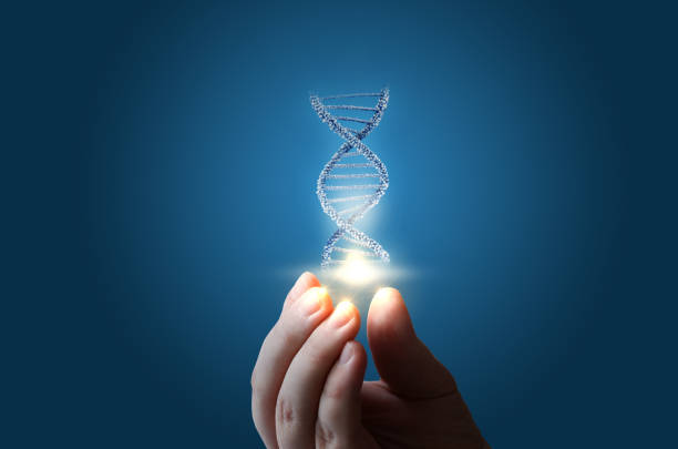 dna in hand on blue background. - dna foto e immagini stock