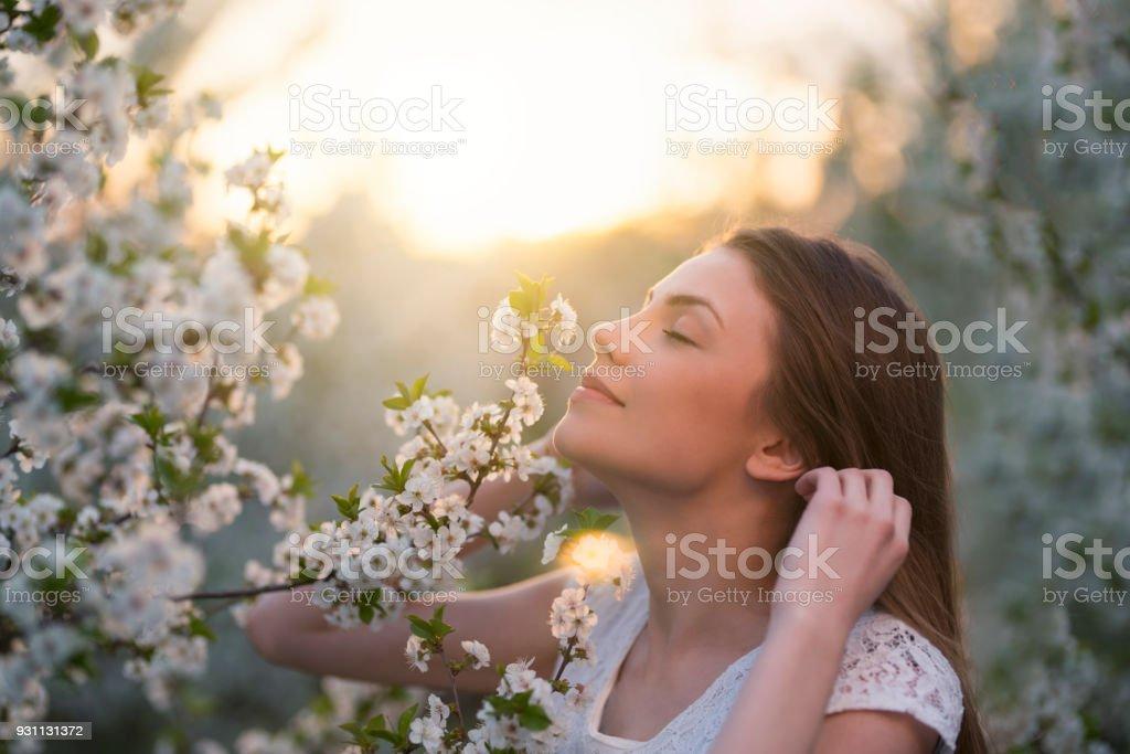 In Her Fragrant, Dreamworld stock photo