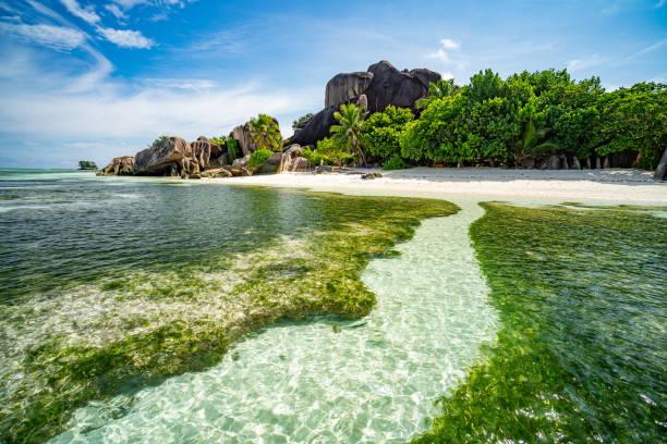 in lagoon of tropical island paradise stock photo