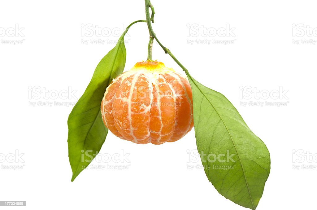 In leafy peeled tangerine stock photo