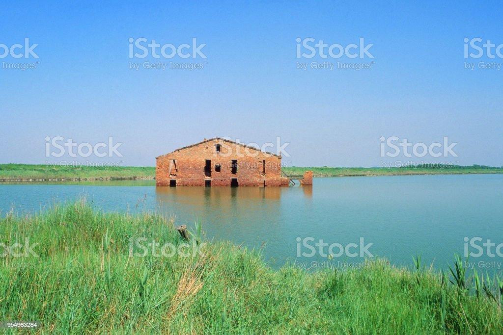 In mezzo all'acqua - foto stock