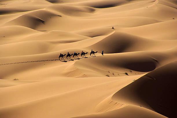 in middle of the desert - sahara stock-fotos und bilder