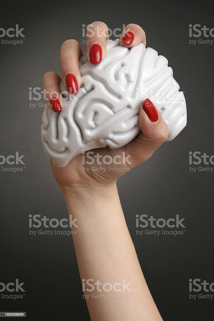 in my hands royalty-free stock photo