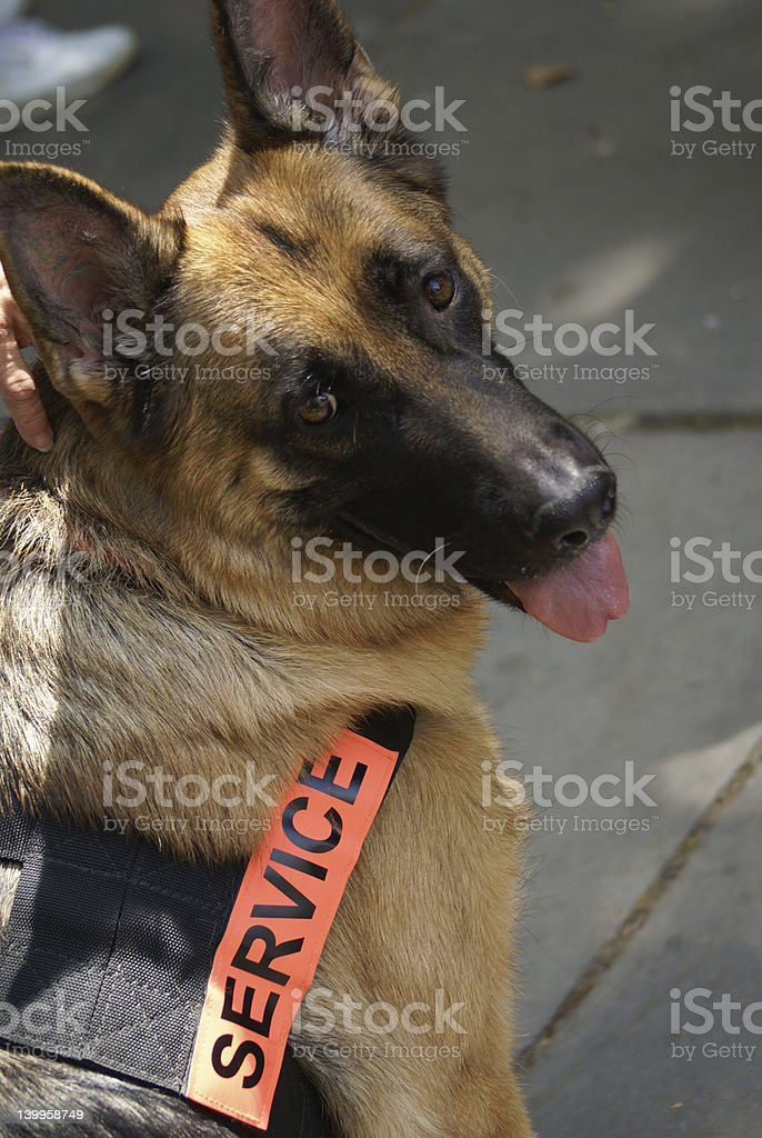 in service royalty-free stock photo
