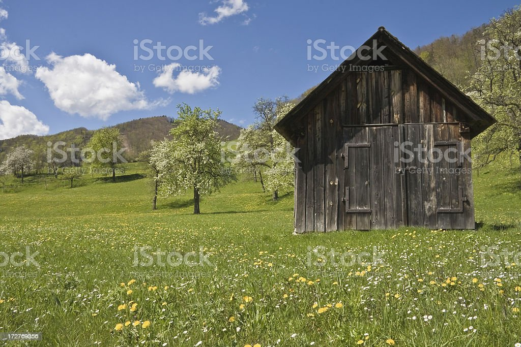 In the Austrian Alps royalty-free stock photo