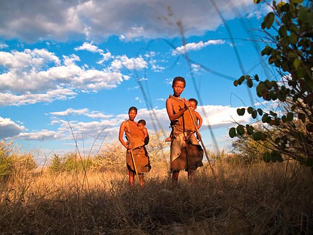 in im bush - afrikanische steppe dürre stock-fotos und bilder