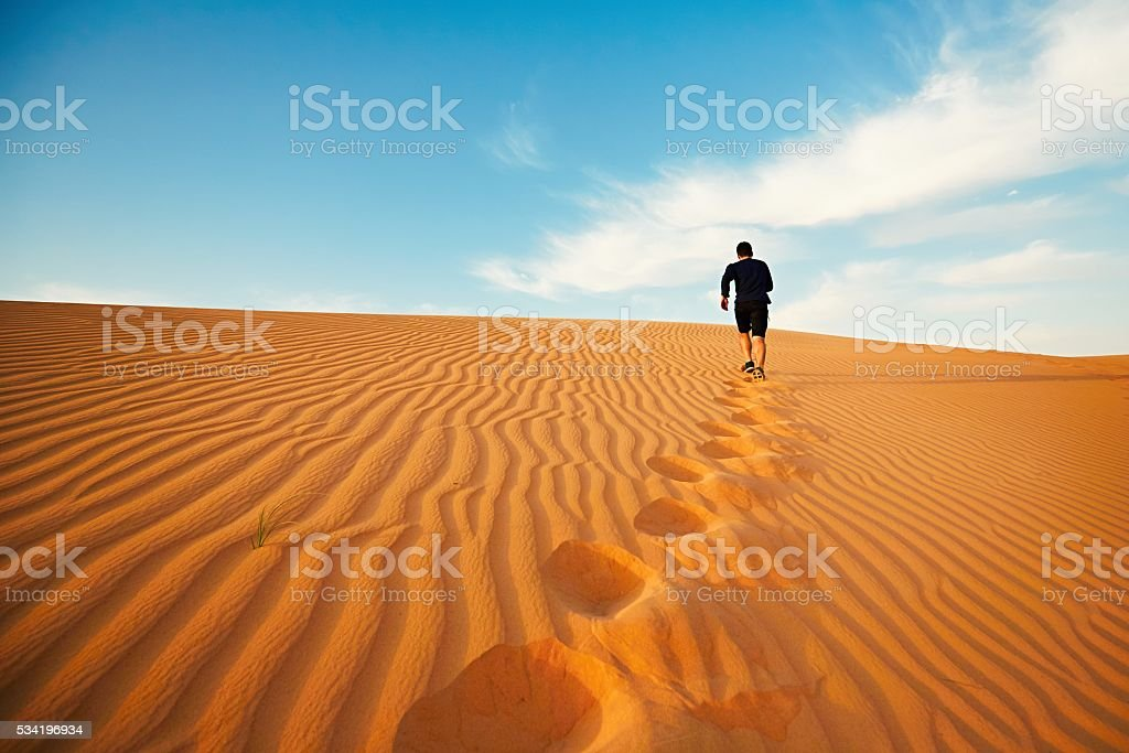 In the desert stock photo