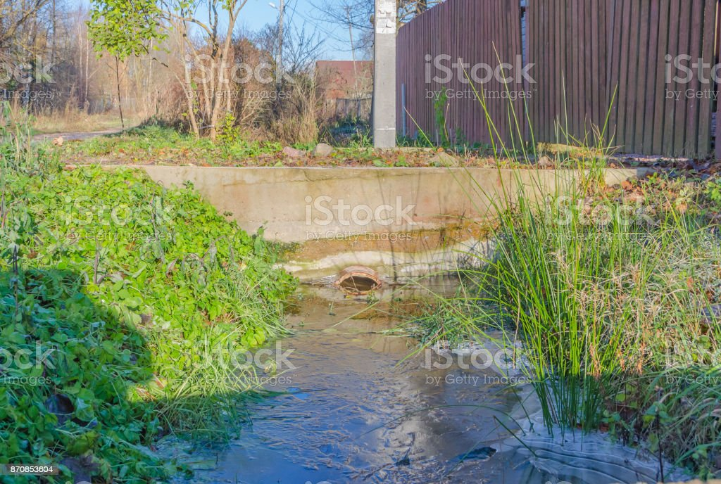 in the ditch rose water, clogged sewer stock photo