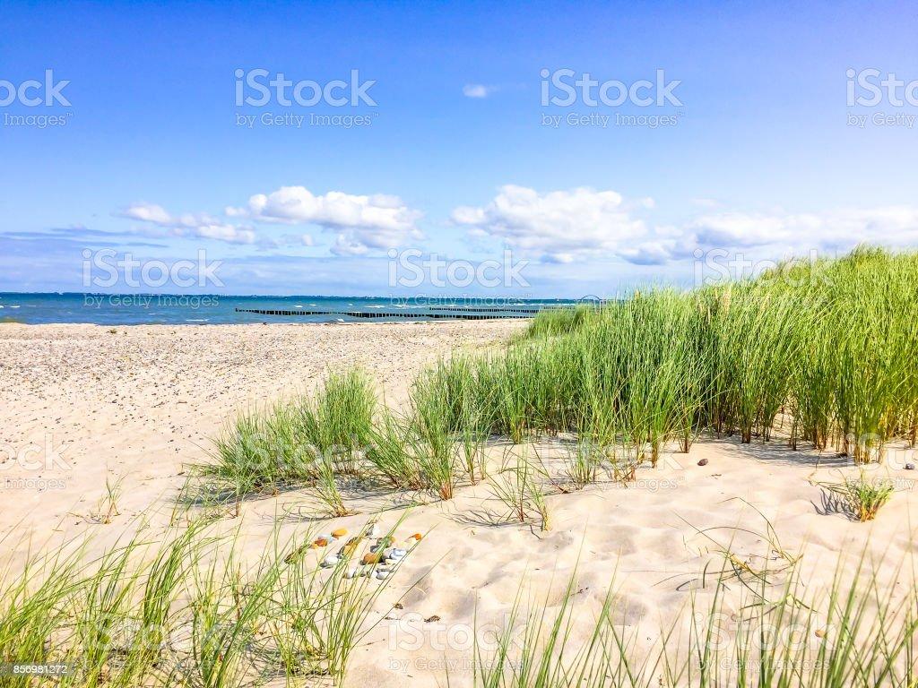 in the dunes, baltic sea, Heiligenhafen stock photo