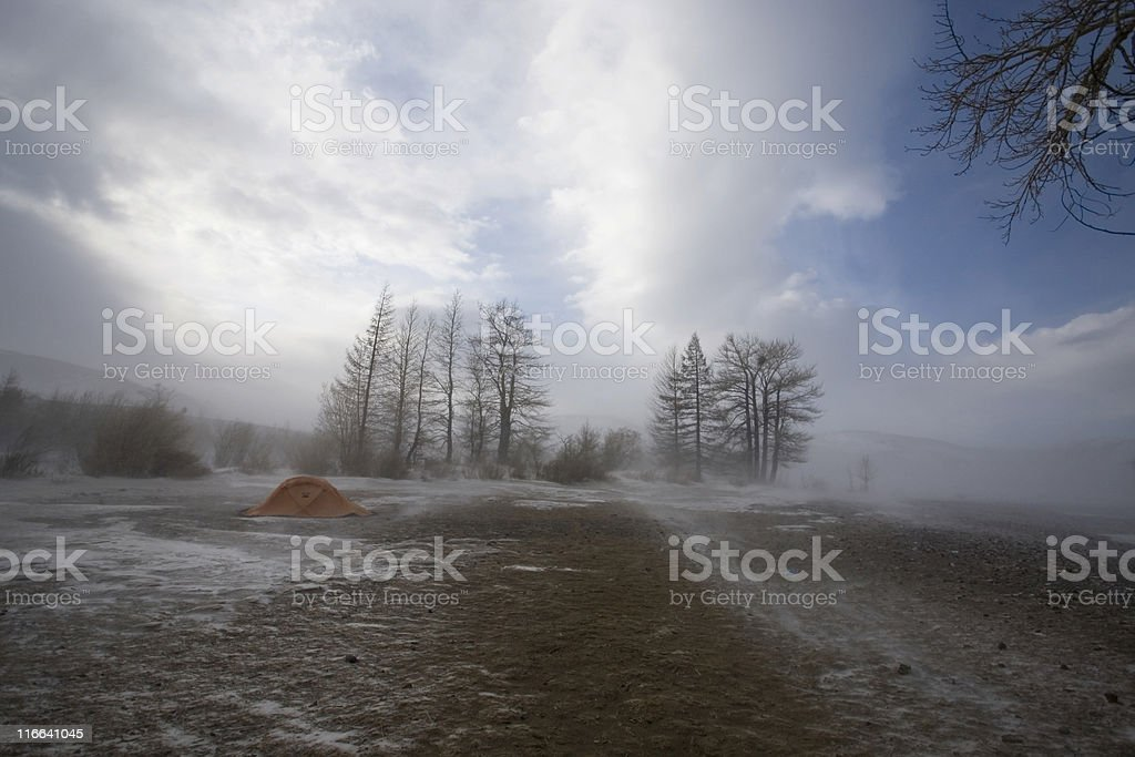 In the face of snow storm royalty-free stock photo