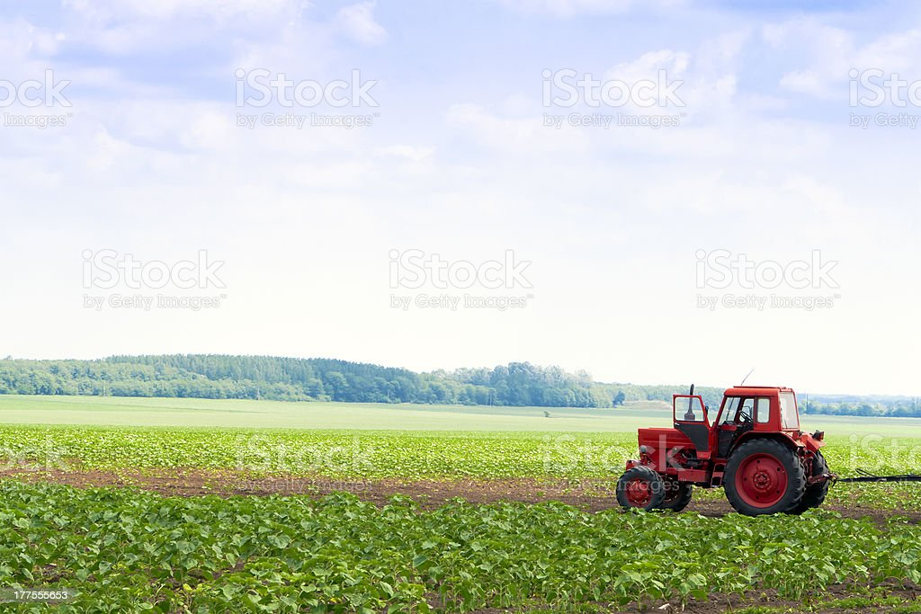 In the field of agricultural machinery available. stock photo