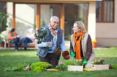 Senior couple gardening together in front of their retirement community house.See more OUTDOORS and INDOORS LIFESTYLE images with these SENIOR MODELS. Click any image below for lightbox.