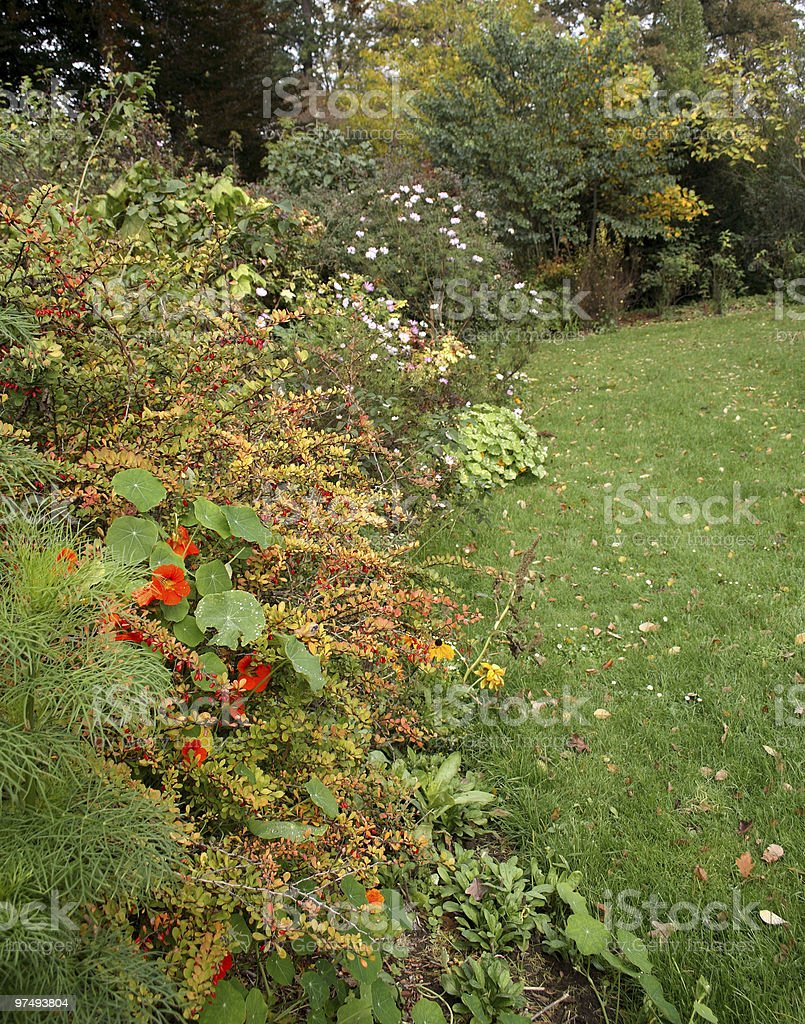In the Garden royalty-free stock photo
