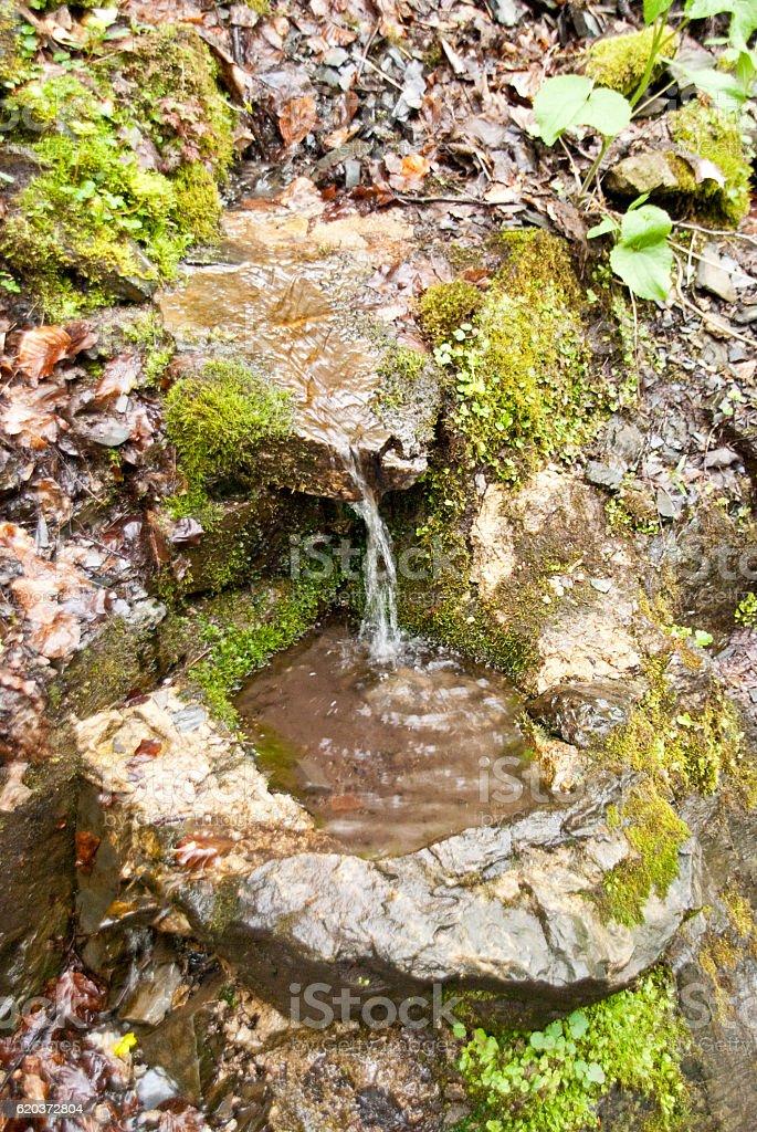 W Góry Harz zbiór zdjęć royalty-free