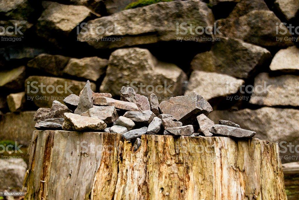 Nas Montanhas de Harz foto de stock royalty-free