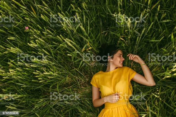 Photo of In the meadow