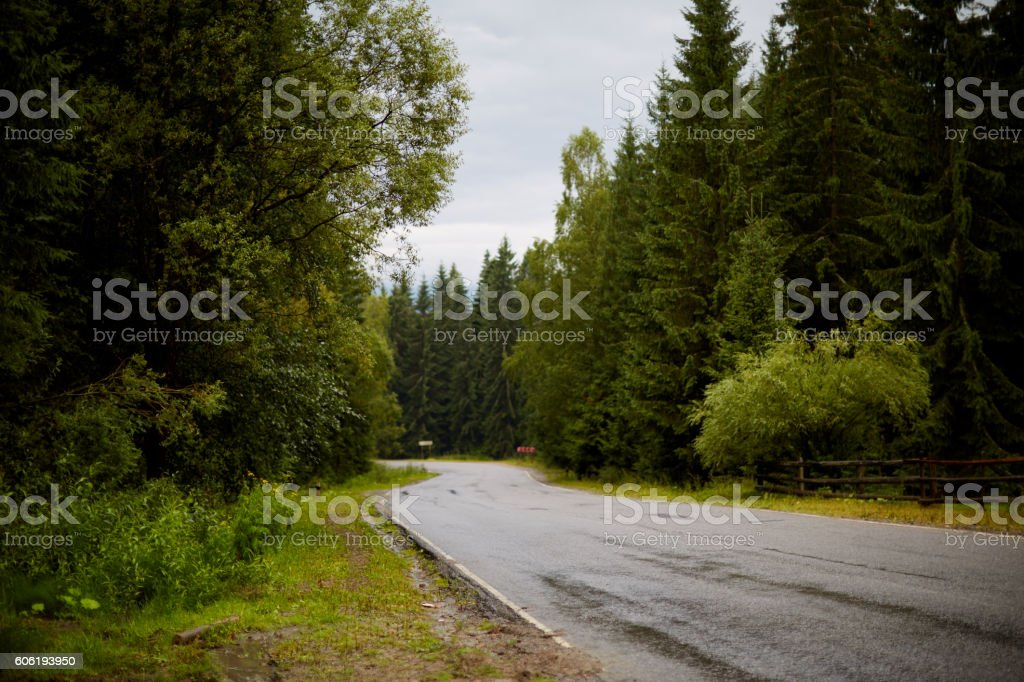 in the middle of mountain road stock photo