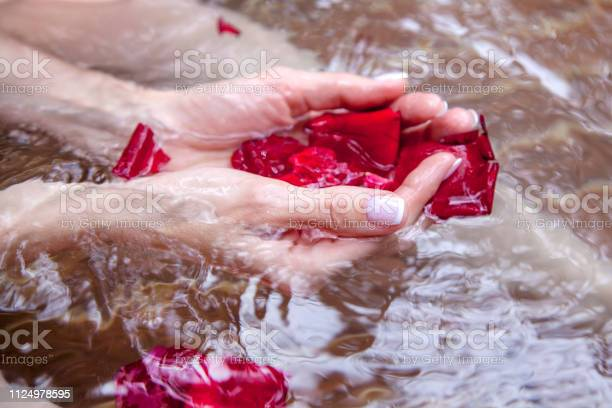 In the palms of the girls petals of red roses in the water spa for picture id1124978595?b=1&k=6&m=1124978595&s=612x612&h=kxrysbamlqvw0dop7j hjem jutg8ttsrkdzkl5xmc0=