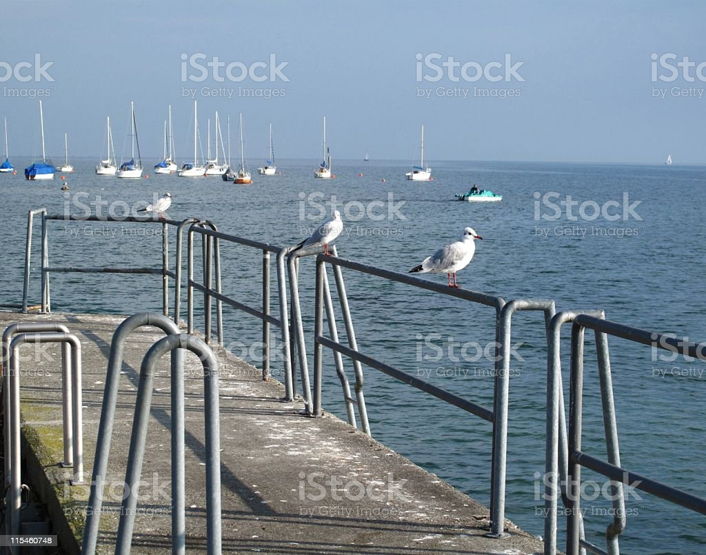 In the port of Hagnau stock photo