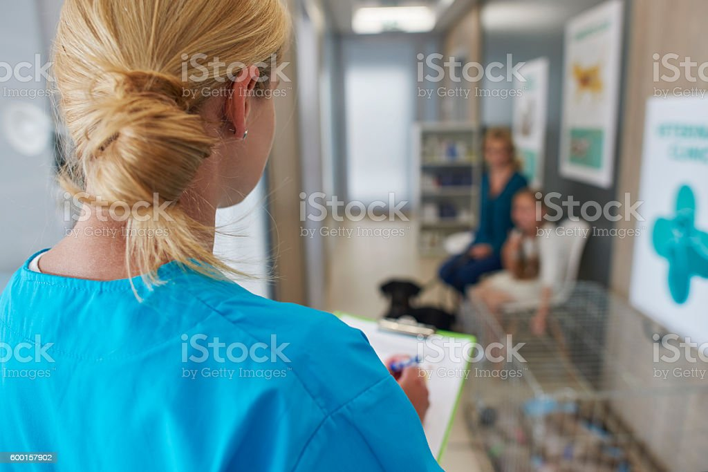 In the queue to the vet stock photo