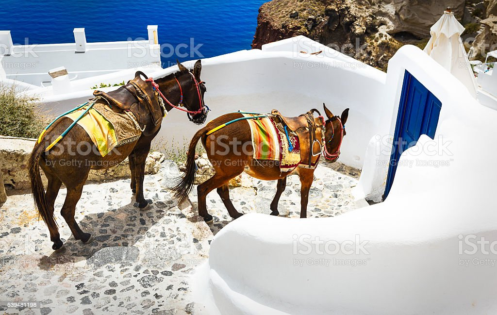 In the streets of Oia stock photo