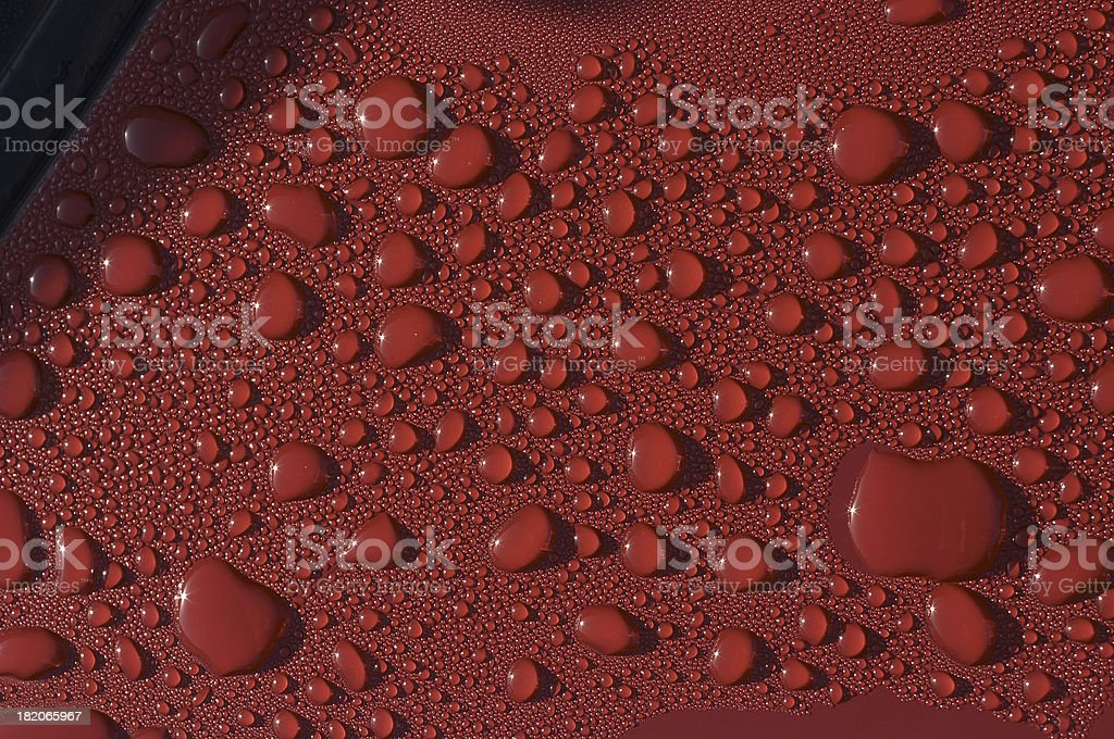 Sunshine and raindrops on red metal car bonnet stock photo