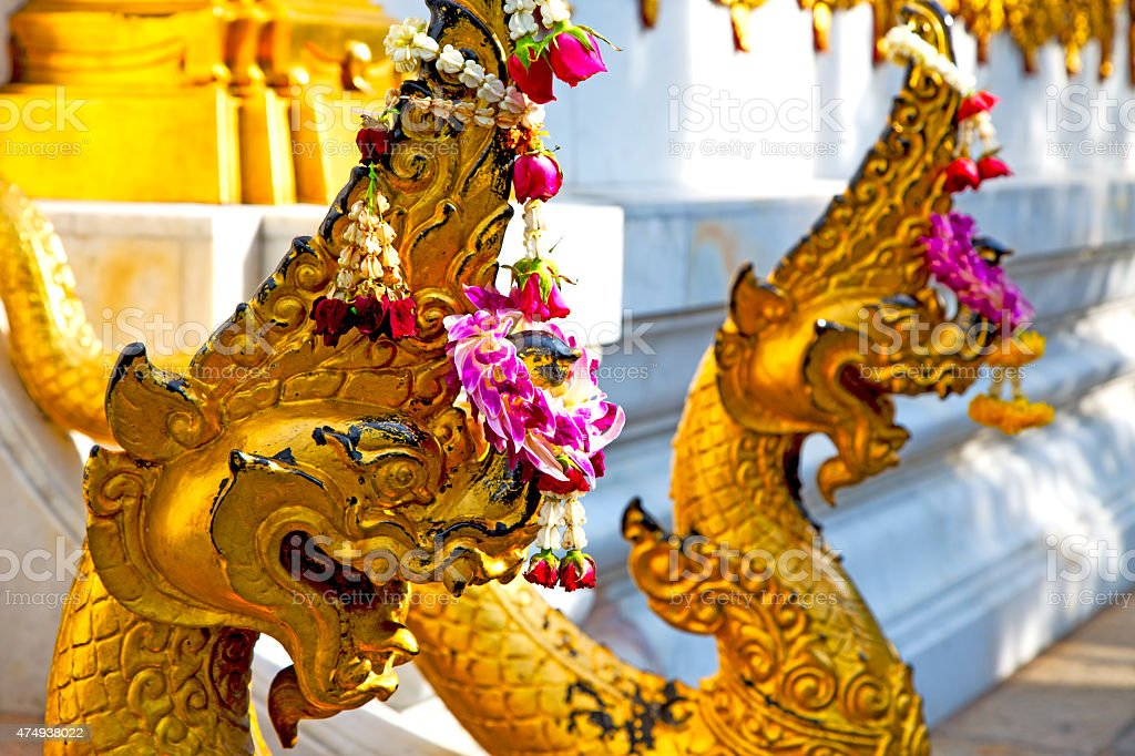 in the temple bangkok     thailand abstract  wat  palaces stock photo