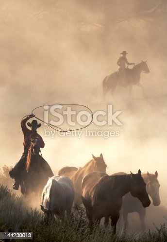 western cowboys in action