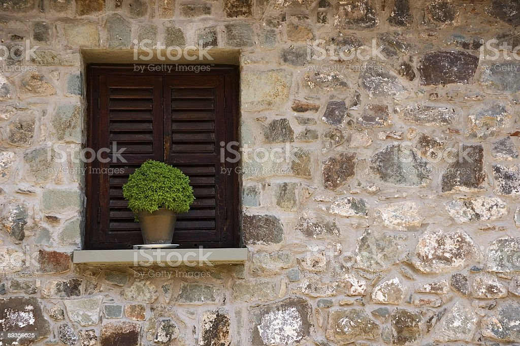 In the window royaltyfri bildbanksbilder