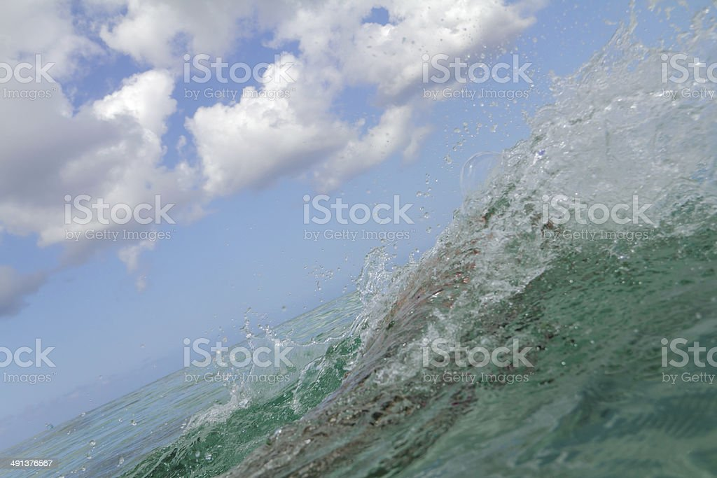 in water stock photo
