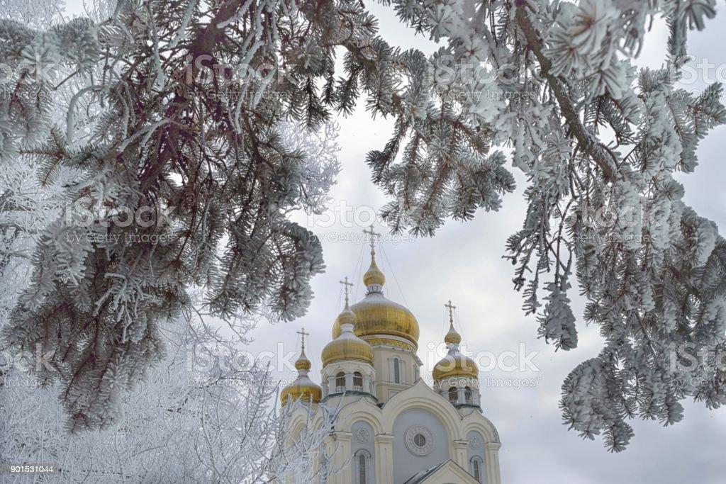 Im Winter umfasst – Foto