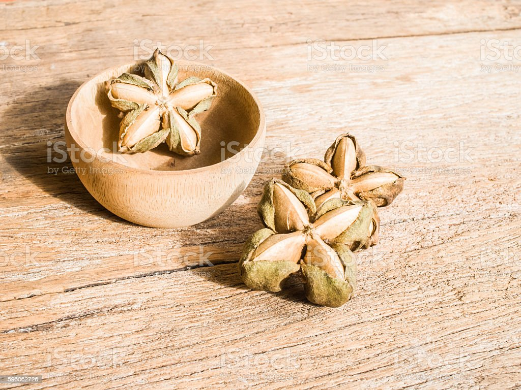 Inca nuts on wood background royalty-free stock photo