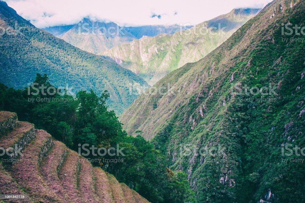 Ruinas Incas De Cultivo De Terrazas Cerca De Machu Picchu