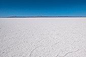 The Isla Incahuasi at the Salar de Uyuni