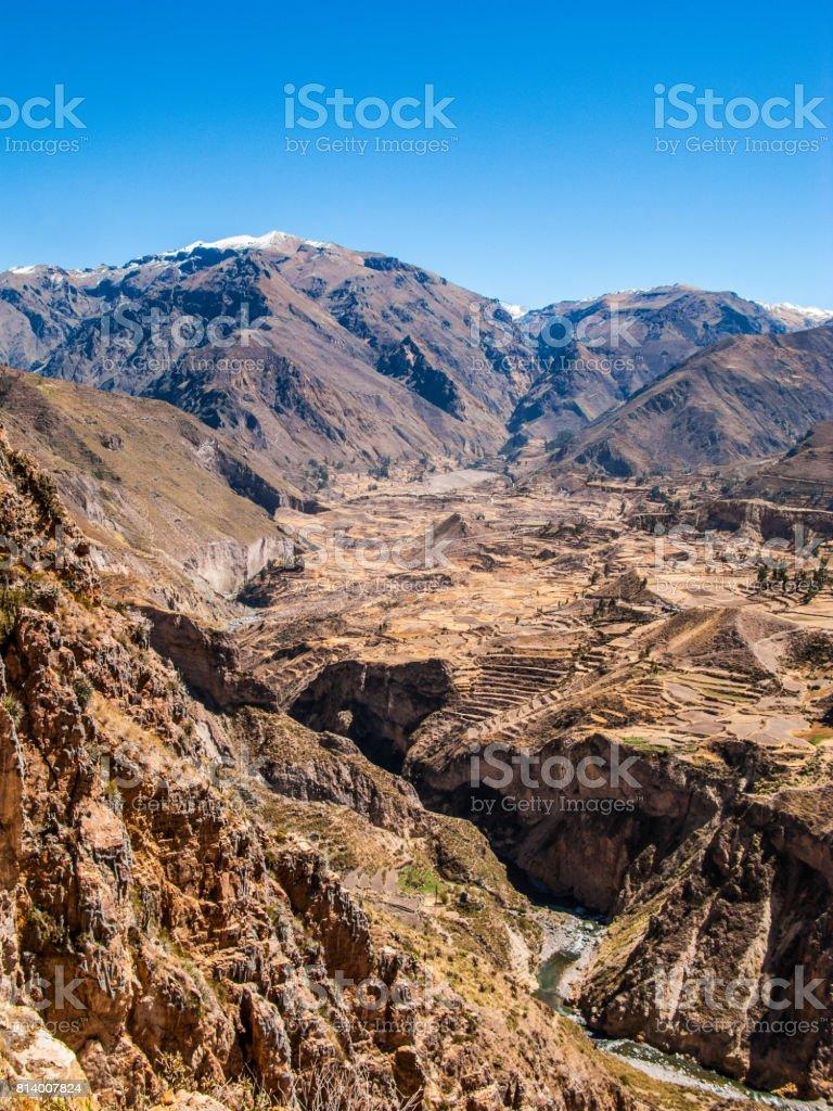 Cultivos En Terrazas Incas En El Valle Del Colca Foto De