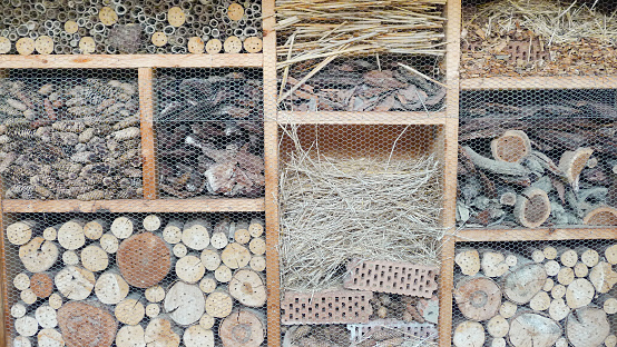 Incect House. Construction of different materials for the Insects.
