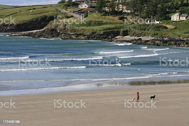 Inchydoney beach picture id172405196?b=1&k=6&m=172405196&s=612x612&h=vohzycbo8mwso  dbvgfofzpbrm8 1ppatfg2rnmrv4=