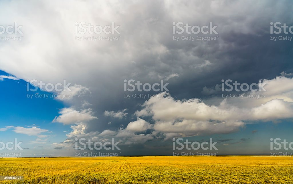 Incoming Storm Clouds over Kansas Field (XXXL) royalty-free stock photo