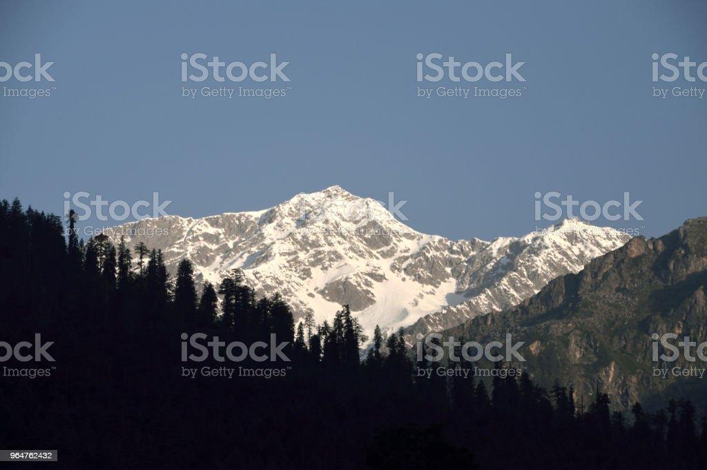 Incredible Nature royalty-free stock photo