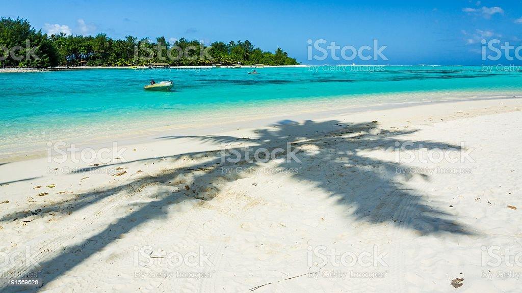 incredible ocean of cook islands stock photo