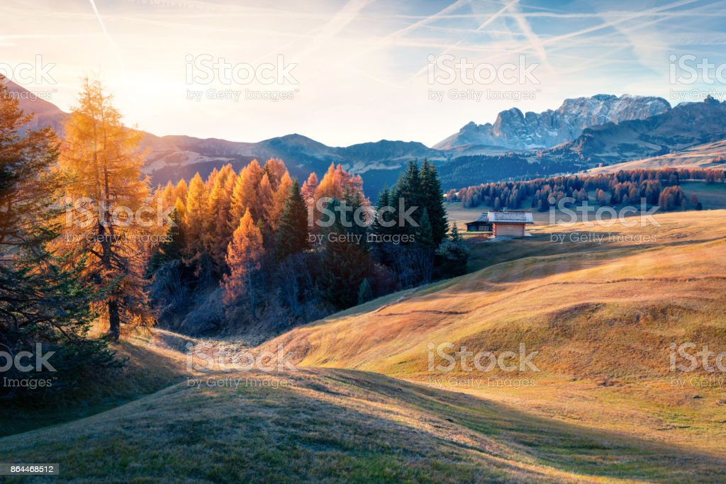 Incredible outdoor scene in Alpe di Siusi with beautiful yellow larch trees and Rosengarten mountain range on background stock photo