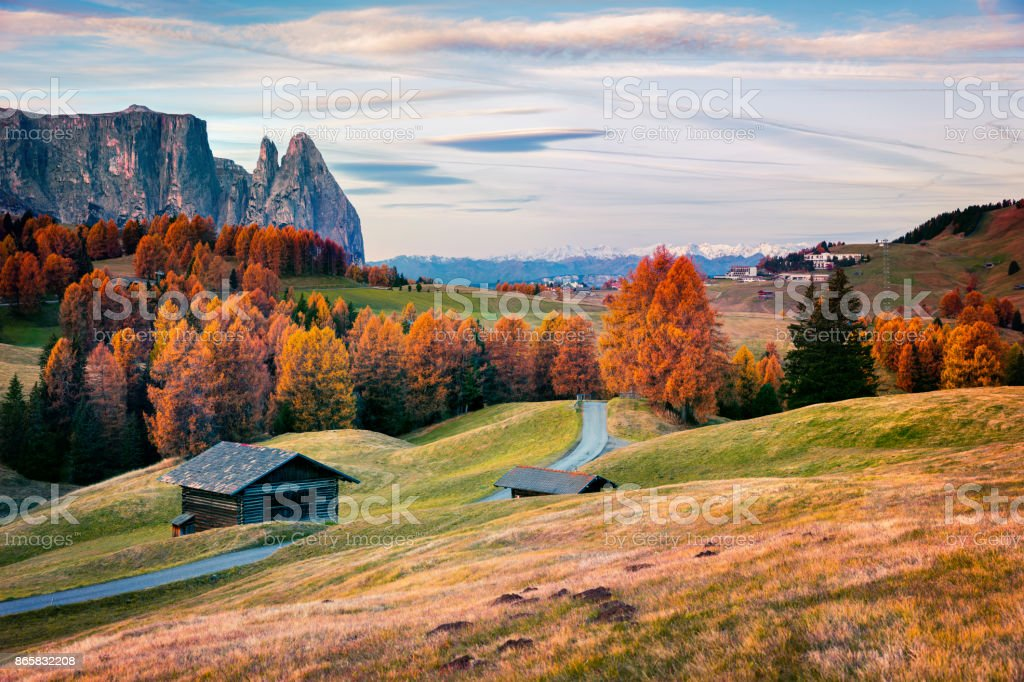 Incredible outdoor scene in Alpe di Siusi with beautiful yellow larch trees and Schlern (Sciliar) mountain on background. stock photo