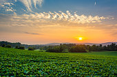 istock Incredible sunset sky over the Piegon Hills and farm fields, near Spring Grove, Pennsylvania. 1284231495